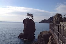 Walk to Portofino