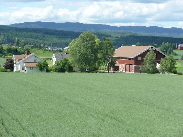 Norgesferie med sanseopplevelser - Kultur og Natur