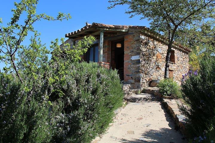 Small house Tajo Natural Park / Tae