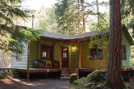 Romantic 1930's Cabin with Hot Tub - Rhododendron