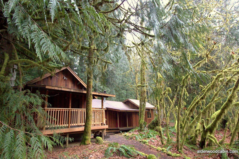 romantic private mt hood cabin in rhododendron