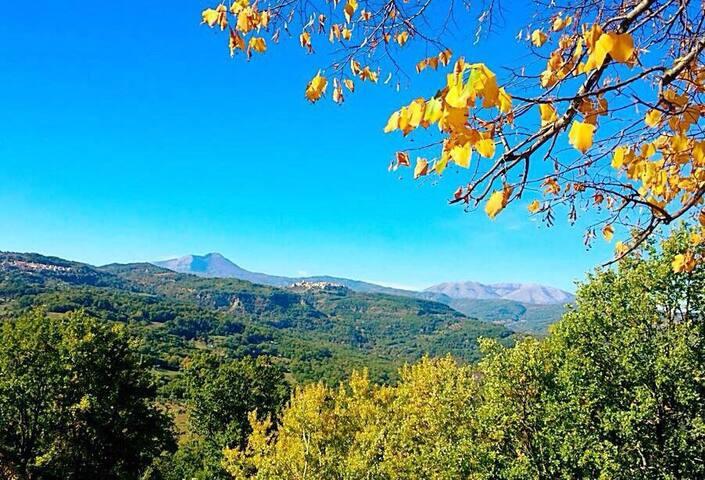 Villetta nel verde della Lucania - Teana