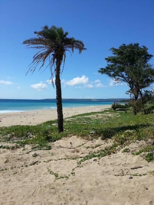 民宿後方的大灣沙灘