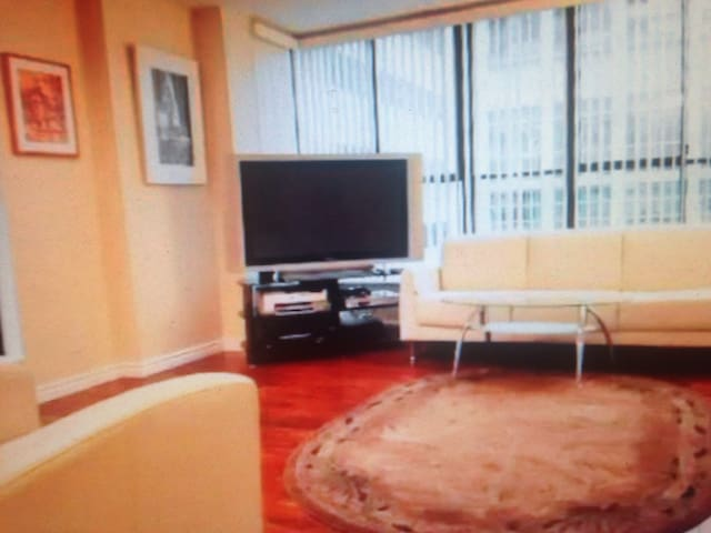 Apartment in downtown - Cecina - Daire
