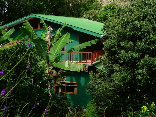 Mariposa Bed & Breakfast Monteverde - Monteverde - Byt