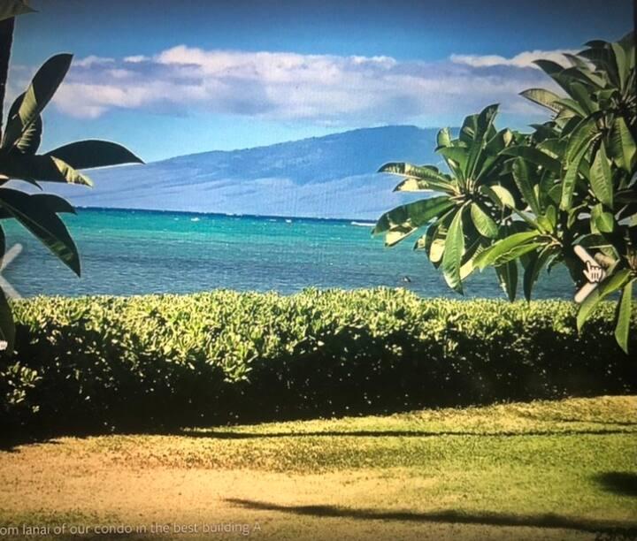 Wavecrest Resort 112A Spring into Summer Rates