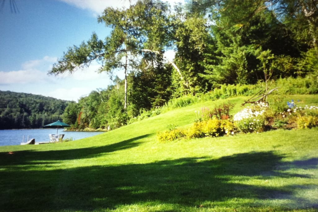 The lake in the summer