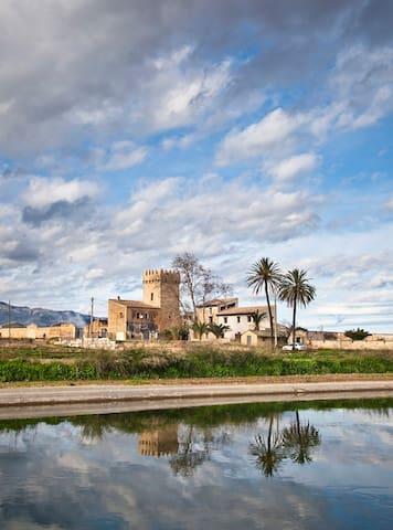 Modern room adjoined to a 12c tower - Tortosa