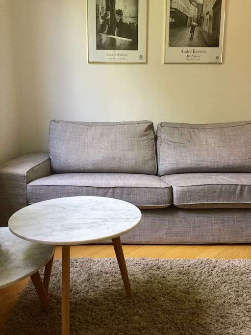 Small but cozy apartment will offer you a great place to rest while your stay in Stockholm.