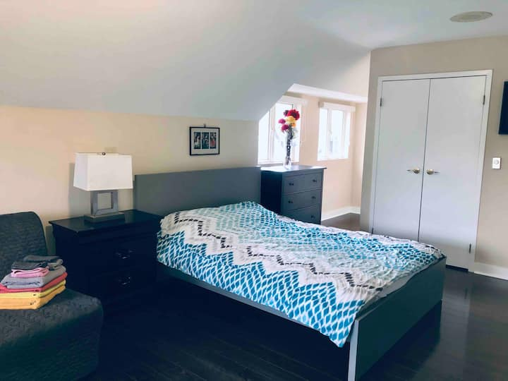 Beautiful & Spacious Studio in the heart of Annex