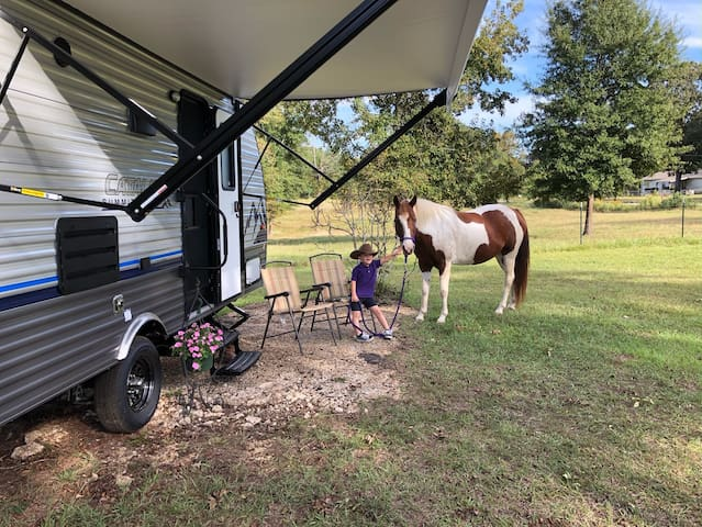 Saddle Horse Hill - Horse Rigs, RVs, Campers