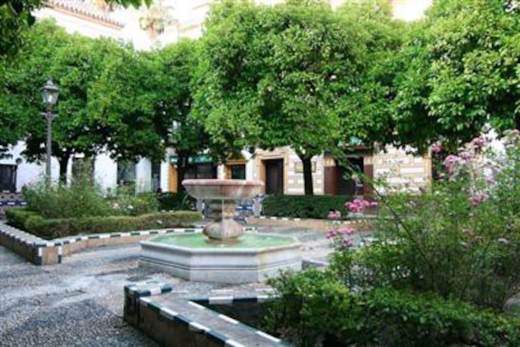 Apartamento en plaza de do a elvira apartments en for Alquiler de apartamentos en sevilla espana