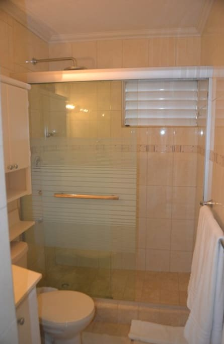 Newly remodeled bathroom includes glass-enclosed shower with rain shower head and ample storage.