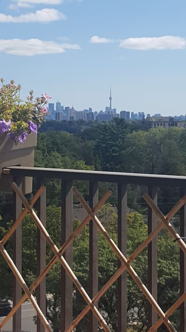 View of Toronto from Private Terrace