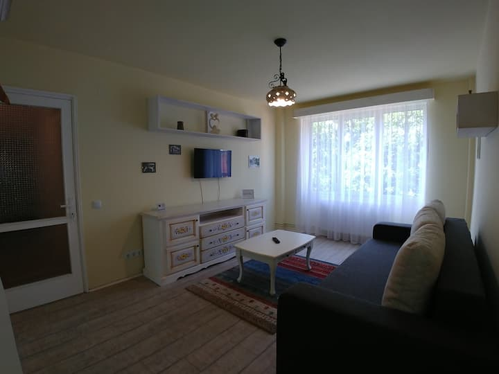 Central cozy & traditional apartment with parking