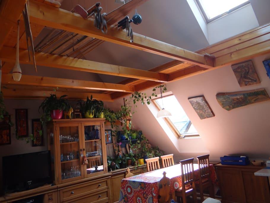 przestronny salon (2 -os. sofa)
