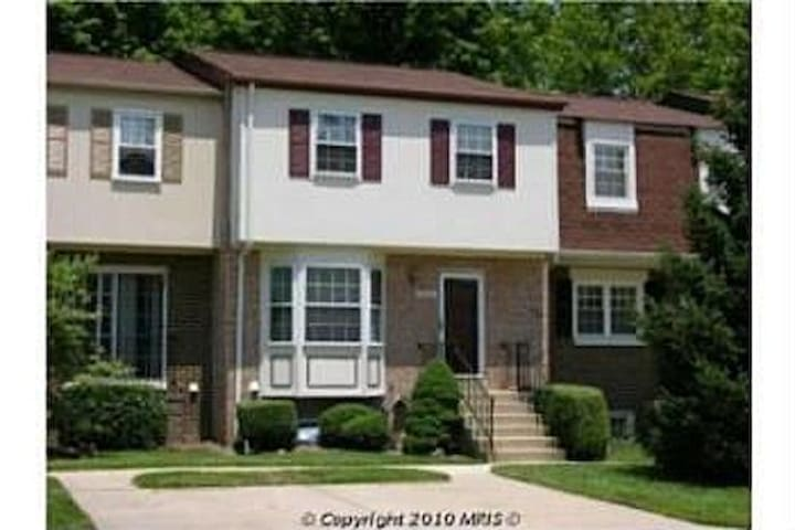Cozy Upscale Apartment tip of D.C! - Silver Spring - Apartment