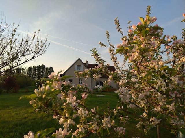 Charmante maison à Villandry-Châteaux de la Loire