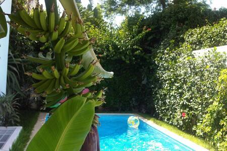 Ecrin de verdure à Casablanca - Casablanca - Bed & Breakfast