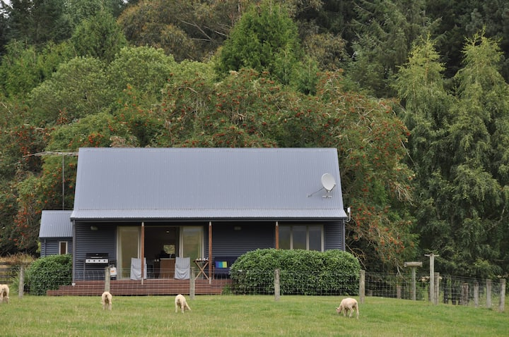 Awatere Cottage - Waikaia