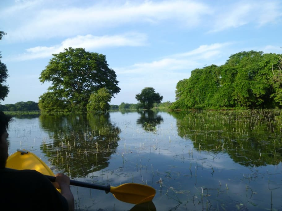 Kayaking in the Galkadawala Lake.