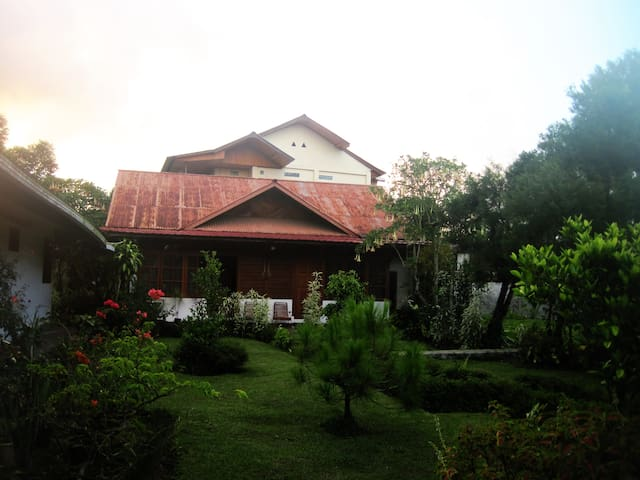 this is the garden of the homestay