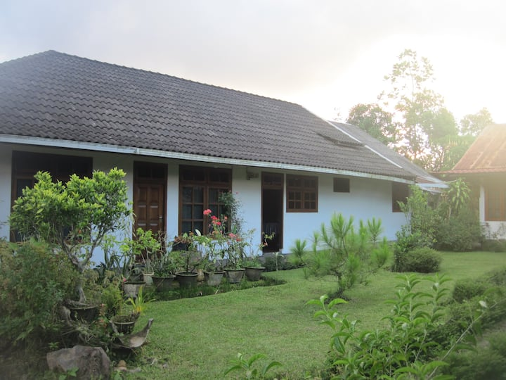 Home stay in Tomohon