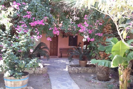 Olive tree Cottage 6