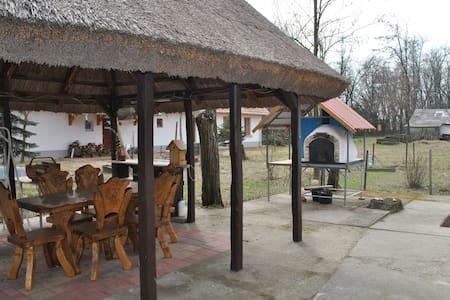 Lajosmizse, Tanya Szálló - 1-es apartman