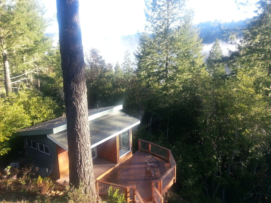 Enjoy the morning views from Sunrise Mountain...hike nearby at Armstrong Woods & Austin Creek State Parks.   This bird's eye-view of The Studio from main house/Sky Suite is blocked by newly added Privacy Sky Fence.