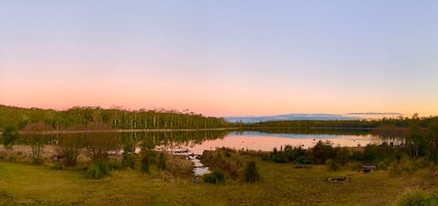 Tranquil lake setting - bush and animals galore