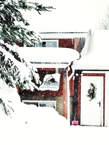 Big Shreddy Bed and Breakfast - Revelstoke - Szoba reggelivel