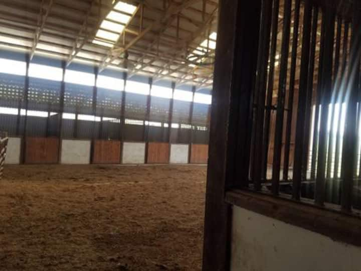 Barn apartment with four horse stalls