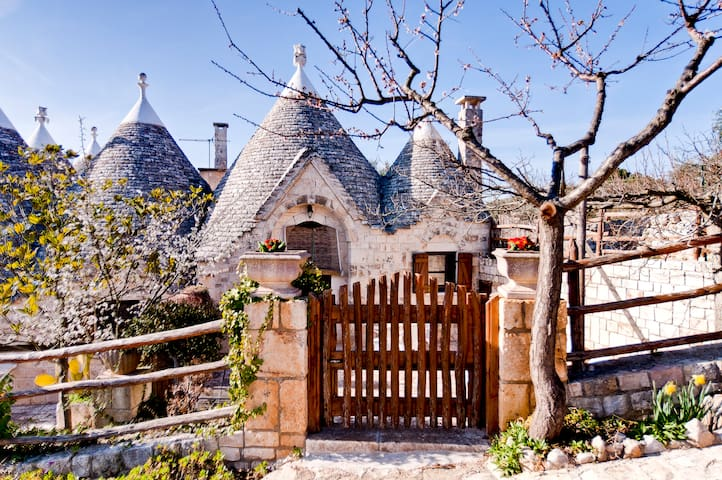 I SETTE CONI - TRULLO EDERA