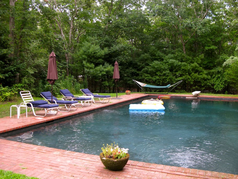 25x50 Huge Natural Bottom Pool, Surrounded By Lush Landscaping and Total Privacy