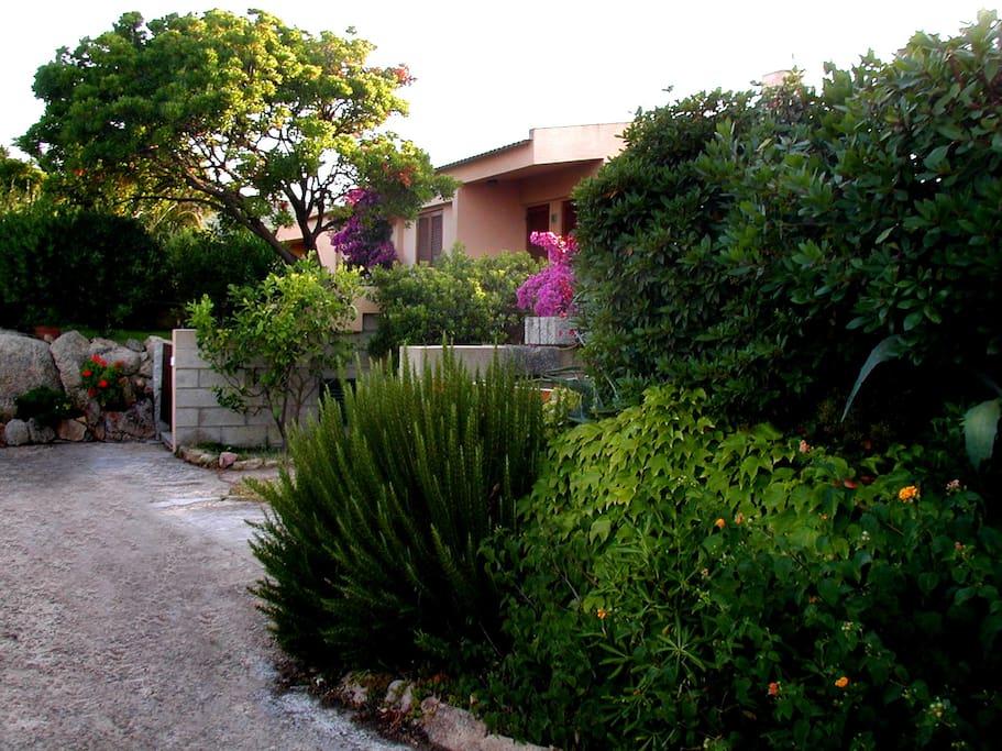 L'ingresso e il giardino anteriore