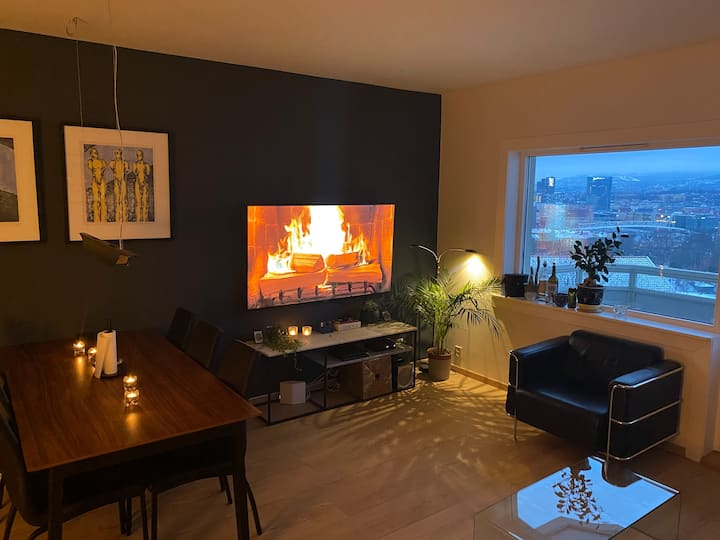 Apartment in Oslo Old Town with unique view