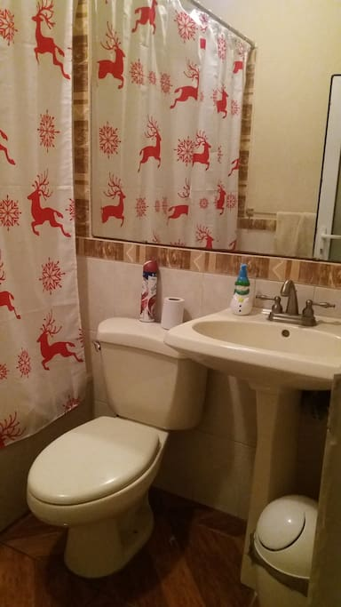 Baño (bath)
