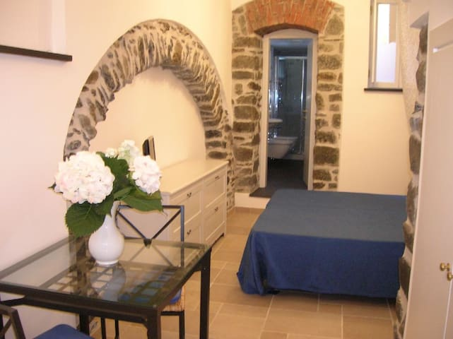 Studio flat Monterosso historic center
