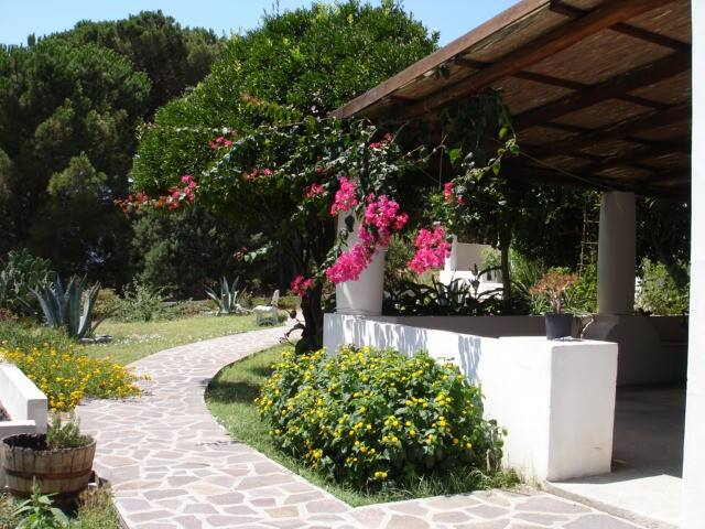 apartments, Salina, Aeolian Islands - Valdichiesa - Appartement