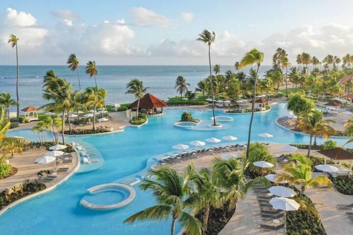 Ocean Front Junior King Suite, Pool, Beach Access