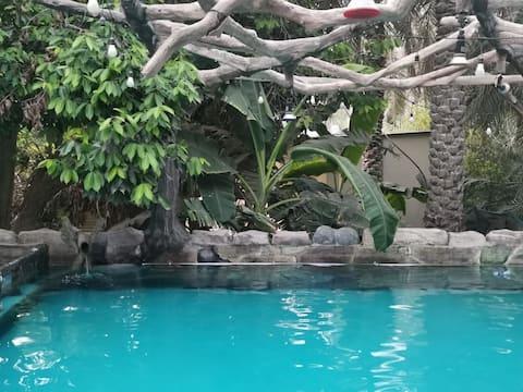 Mango farm in Fujairah hall,  3bd,  swimming pool