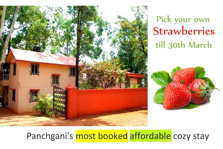 ★100+ reviews, Whistling Palms, 2BHK Homestay★