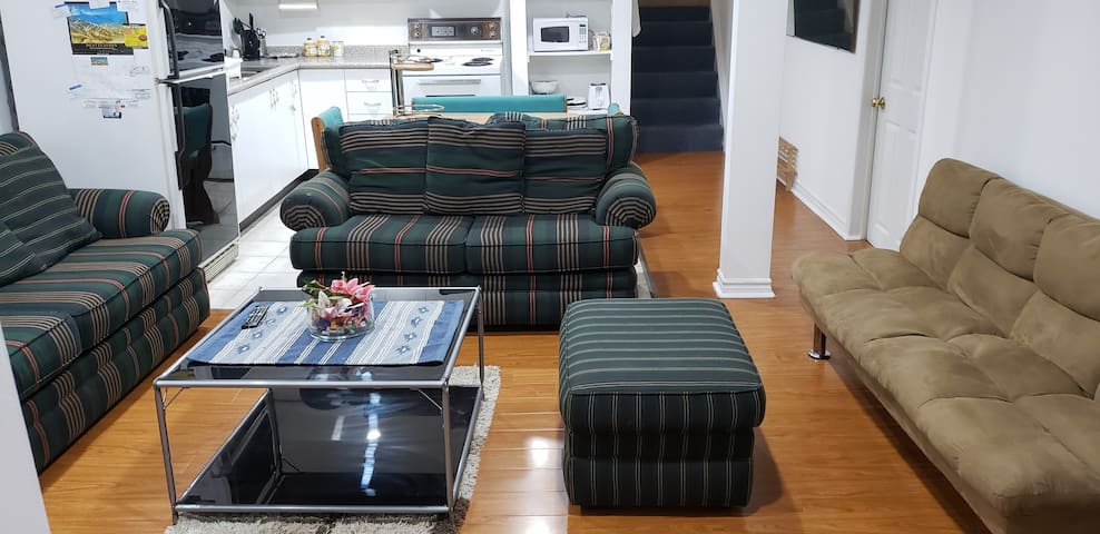 Futon couch (brown color) on the side and big couch for extra guest to sleep.