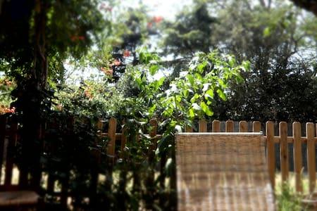 Maison proche d'un cour d'eau à 15 min de Toulouse - Pins-Justaret - Hus