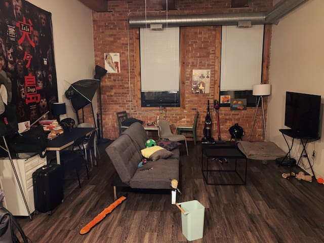 1 Room in a South Loop 2bed/2bath Loft Apartment