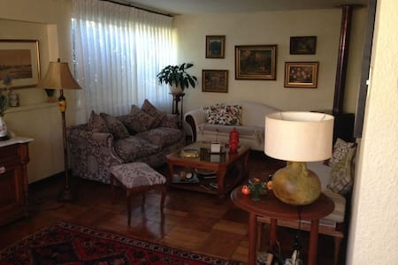 Family house - Just two blocks from the square!! - Linares - Huis