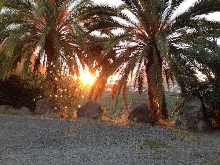 Natural Space in Finca La Ladera