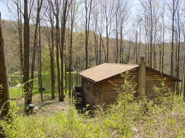 Private Mountain Camp & Pvt Pond - New Milford - Cabin
