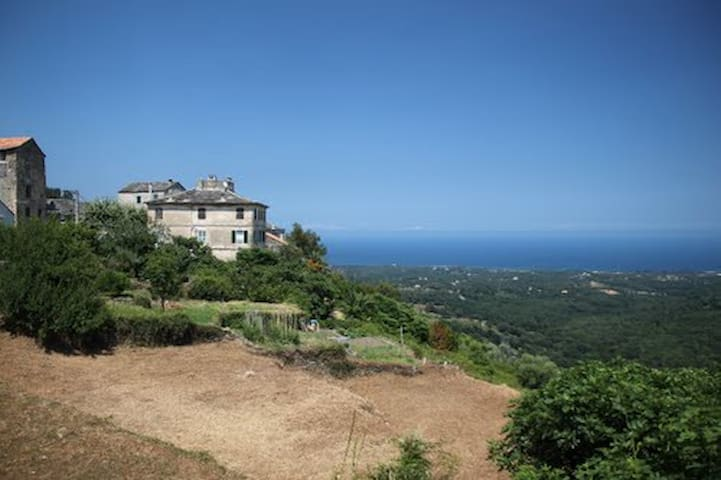 Rent charming studio in Corsica - Sant'Andréa-di-Cotone - อพาร์ทเมนท์